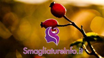 Olio di rosa Mosqueta contro le smagliature